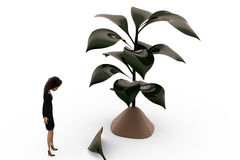 3d woman with falling leaf from plant concept Royalty Free Stock Photography