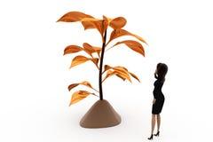3d woman golden tree concept Stock Images