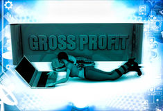 3d woman with grow profit board and laptop illustration Stock Photography