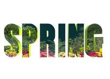 3D woord - de lente Royalty-vrije Stock Foto