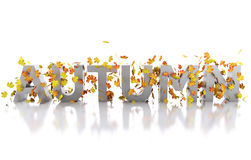3d Word autumn decorated with leaves. 3d renderer image. Word autumn decorated with leaves. Isolated white background Royalty Free Stock Photo