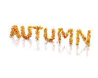 3d Word autumn written with leaves. 3d renderer image. Word autumn written with leaves. Isolated white background Royalty Free Stock Photo