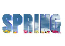 3D word - spring. Solid 3d spring word with flowers Royalty Free Stock Images