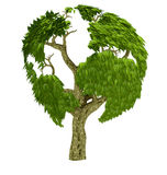 3D world tree Royalty Free Stock Photos