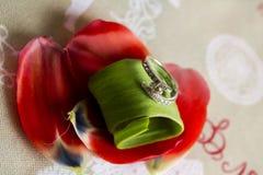 3d wytwarzał ringowego wizerunku ślub Fotografia Royalty Free