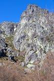 D& x27 de Covao ; ametade Image libre de droits
