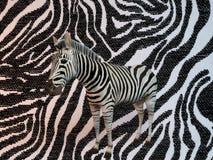 3d Zebra pattern Royalty Free Stock Photos