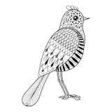Dé a zentangle exhausto el pájaro artístico para el colorante antiesfuerzo adulto Imágenes de archivo libres de regalías