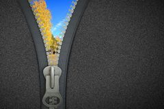 3 D zipper Royalty Free Stock Photos