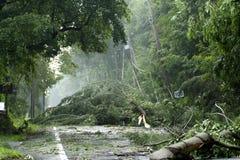 Daño de la tormenta fotografía de archivo