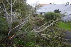 Daño de la tormenta foto de archivo