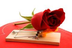 Daños del amor Foto de archivo libre de regalías