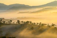 Da拉特, Lam Dong,越南2017年2月12日:da拉特城市、一座小越南塔雾的和杉木小山beautyful风景  免版税库存照片
