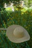 da садовничает лето сторновки шлема гамака Стоковое Изображение RF
