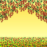Da baga vermelha do ramo de Ashberry fundo natural Imagens de Stock Royalty Free