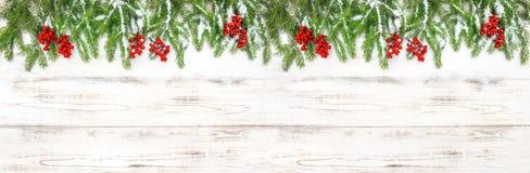 Da bandeira floral dos feriados da decoração do Natal branc sempre-verde da árvore Imagens de Stock