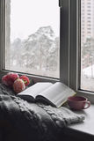 Da casa vida acolhedor ainda: copo do café quente, das flores da mola e do livro aberto com a manta morna na soleira contra a nev Fotos de Stock