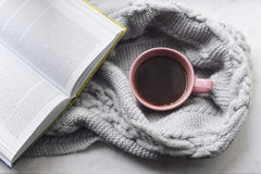 Da casa vida acolhedor ainda: copo do café quente e do livro aberto com a manta morna na soleira contra a paisagem da neve fora Foto de Stock Royalty Free