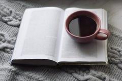 Da casa vida acolhedor ainda: copo do café quente e do livro aberto com a manta morna na soleira contra a paisagem da neve fora Imagem de Stock