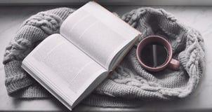 Da casa vida acolhedor ainda: copo do café quente e do livro aberto com a manta morna na soleira contra a paisagem da neve fora Imagem de Stock Royalty Free