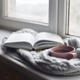 Da casa vida acolhedor ainda: copo do café quente e do livro aberto com a manta morna na soleira contra a paisagem da neve fora Fotografia de Stock