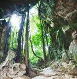 Da caverna fotografia de stock