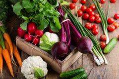 Da colheita vida ainda Composição de alimento de vegetais orgânicos frescos Fotos de Stock