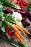 Da colheita vida ainda Composição de alimento de vegetais orgânicos frescos Fotografia de Stock Royalty Free