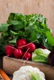 Da colheita vida ainda Composição de alimento de vegetais orgânicos frescos Fotos de Stock Royalty Free