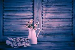 Da cozinha vida rústica ainda Imagens de Stock