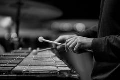 Da el músico que juega el glockenspiel Fotografía de archivo