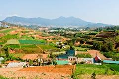 da fields laten terrasserade vietnam Royaltyfria Bilder