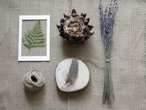 Da flor vida abstrata ainda Imagens de Stock Royalty Free
