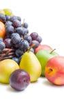 Da fruto el arreglo Imagen de archivo libre de regalías