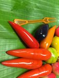 Da fruto la bola de masa hervida imitada postre tailandés de la soja cubierta con la jalea Fotografía de archivo libre de regalías