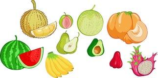 Da fruto la colección stock de ilustración