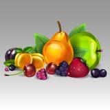 Da fruto la composición Fotos de archivo