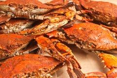 Da garra azul do chesapeake colossal, cozinhado e temperado da pilha crabs imagem de stock