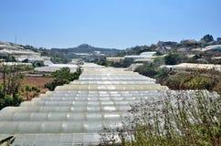 DA LAT CITY, VIETNAM - January 23, 2015: nobody, greenhouses in the vicinity of Da Lat Stock Photo