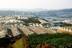 Da Lat suburbs with vegetable farm, glasshouses and residential Royalty Free Stock Image