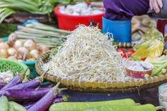 Da-Latmarknad, Da-Latstad, Lam Dong landskap, Vietnam Fotografering för Bildbyråer