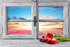 Da mola decoração da vida ainda com janela rústica Fotografia de Stock