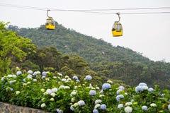 Da Nang, Vietnam - 2 April, 2016: Kabelwagen met bloemen op voorgrond voor vervoer aan de Heuvelsplaats van Bedelaarsna, 30km van royalty-vrije stock foto's