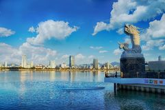 Da Nang, VIetnam: Dragon carp on a beautiful morning. This photo was taken by sony camera royalty free stock photo