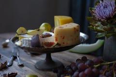 Da obscuridade vida ainda com queijo diferente Imagem de Stock Royalty Free