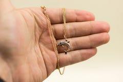 da oro nella forma dei delfini immagini stock libere da diritti
