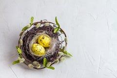 Da Páscoa vida ainda, cartão - ainda vida rústica com os ovos de codorniz no ninho na superfície concreta áspera Imagem de Stock Royalty Free