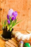 Da Páscoa vida ainda com ovos e açafrão coloridos das flores Imagem de Stock Royalty Free
