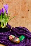 Da Páscoa vida ainda com ovos e açafrão coloridos das flores Foto de Stock Royalty Free