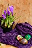 Da Páscoa vida ainda com ovos e açafrão coloridos das flores Fotografia de Stock Royalty Free